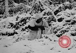Image of Western Front snow scenes January 1945 in World War II Europe, 1945, second 14 stock footage video 65675043290