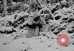 Image of Western Front snow scenes January 1945 in World War II Europe, 1945, second 15 stock footage video 65675043290