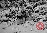 Image of Western Front snow scenes January 1945 in World War II Europe, 1945, second 17 stock footage video 65675043290