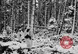 Image of Western Front snow scenes January 1945 in World War II Europe, 1945, second 19 stock footage video 65675043290
