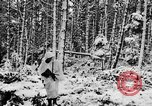 Image of Western Front snow scenes January 1945 in World War II Europe, 1945, second 21 stock footage video 65675043290