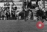 Image of Rodeo show Ellensburg Washington USA, 1935, second 24 stock footage video 65675043350