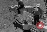 Image of Rodeo show Ellensburg Washington USA, 1935, second 33 stock footage video 65675043350