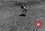 Image of Rodeo show Ellensburg Washington USA, 1935, second 38 stock footage video 65675043350