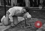 Image of Ted Allen Moline Illinois USA, 1935, second 53 stock footage video 65675043351