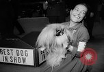 Image of Westminster Dog Show New York City USA, 1960, second 50 stock footage video 65675043366
