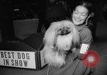 Image of Westminster Dog Show New York City USA, 1960, second 52 stock footage video 65675043366