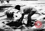 Image of fish farming Dutch Guiana, 1957, second 7 stock footage video 65675043389