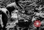 Image of fish farming Dutch Guiana, 1957, second 22 stock footage video 65675043389