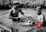 Image of fish farming Dutch Guiana, 1957, second 23 stock footage video 65675043389