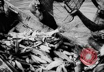 Image of fish farming Dutch Guiana, 1957, second 28 stock footage video 65675043389