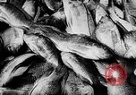 Image of fish farming Dutch Guiana, 1957, second 34 stock footage video 65675043389