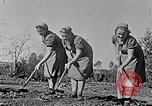Image of Hitler Youth Poland, 1940, second 2 stock footage video 65675043395