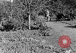 Image of Hitler Youth Poland, 1940, second 35 stock footage video 65675043395