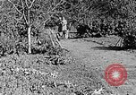 Image of Hitler Youth Poland, 1940, second 36 stock footage video 65675043395