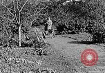 Image of Hitler Youth Poland, 1940, second 38 stock footage video 65675043395