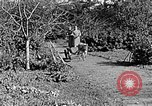 Image of Hitler Youth Poland, 1940, second 40 stock footage video 65675043395