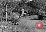 Image of Hitler Youth Poland, 1940, second 41 stock footage video 65675043395
