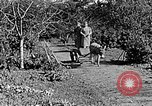 Image of Hitler Youth Poland, 1940, second 43 stock footage video 65675043395