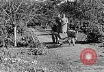 Image of Hitler Youth Poland, 1940, second 44 stock footage video 65675043395