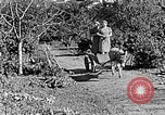 Image of Hitler Youth Poland, 1940, second 45 stock footage video 65675043395