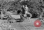 Image of Hitler Youth Poland, 1940, second 46 stock footage video 65675043395