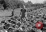 Image of Hitler Youth Poland, 1940, second 50 stock footage video 65675043395