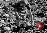 Image of Hitler Youth Poland, 1940, second 55 stock footage video 65675043395