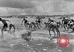 Image of Hitler Youth at beach Poland, 1940, second 11 stock footage video 65675043398
