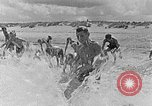 Image of Hitler Youth at beach Poland, 1940, second 14 stock footage video 65675043398