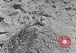 Image of Hitler Youth at beach Poland, 1940, second 37 stock footage video 65675043398
