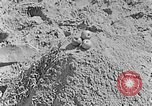 Image of Hitler Youth at beach Poland, 1940, second 38 stock footage video 65675043398