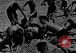 Image of Hitler Youth at beach Poland, 1940, second 46 stock footage video 65675043398