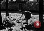 Image of Hitler Youth Poland, 1940, second 15 stock footage video 65675043400