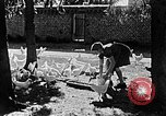 Image of Hitler Youth Poland, 1940, second 20 stock footage video 65675043400