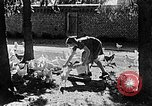 Image of Hitler Youth Poland, 1940, second 22 stock footage video 65675043400