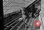 Image of Hitler Youth Poland, 1940, second 28 stock footage video 65675043400