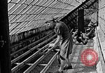 Image of Hitler Youth Poland, 1940, second 30 stock footage video 65675043400