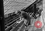 Image of Hitler Youth Poland, 1940, second 32 stock footage video 65675043400