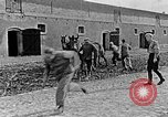 Image of Hitler Youth Poland, 1940, second 47 stock footage video 65675043400