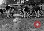 Image of Hitler Youth Poland, 1940, second 51 stock footage video 65675043400