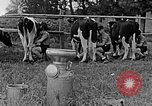 Image of Hitler Youth Poland, 1940, second 53 stock footage video 65675043400