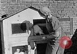 Image of Hitler Youth Poland, 1940, second 57 stock footage video 65675043400