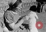 Image of Hitler Youth Poland, 1940, second 61 stock footage video 65675043400