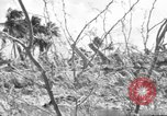 Image of Aggressors troops Vieques Island Puerto Rico, 1950, second 15 stock footage video 65675043405