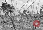Image of Aggressors troops Vieques Island Puerto Rico, 1950, second 16 stock footage video 65675043405