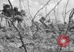 Image of Aggressors troops Vieques Island Puerto Rico, 1950, second 17 stock footage video 65675043405