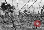 Image of Aggressors troops Vieques Island Puerto Rico, 1950, second 19 stock footage video 65675043405