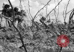 Image of Aggressors troops Vieques Island Puerto Rico, 1950, second 20 stock footage video 65675043405