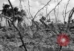 Image of Aggressors troops Vieques Island Puerto Rico, 1950, second 22 stock footage video 65675043405